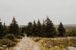 wedding couple holding hands in dolly sods, wv